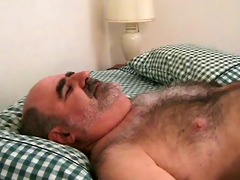 realy hot dad bear solo